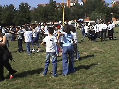 Albero del Maggio 2003 a Foggia_9