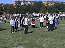 Albero del Maggio 2003 a Foggia_1