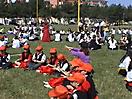 Albero del Maggio 2003 a Foggia_26